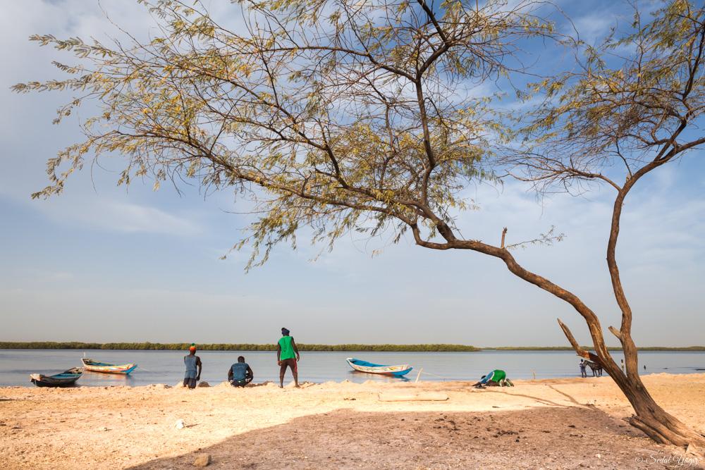 lutteurs de Mar Lodge - Sénégal 1
