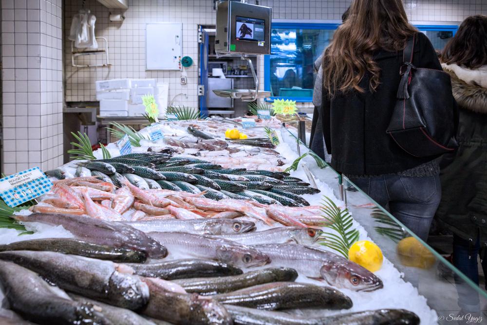 pêcherie-figuerolles - Montpellier (4 sur 10)