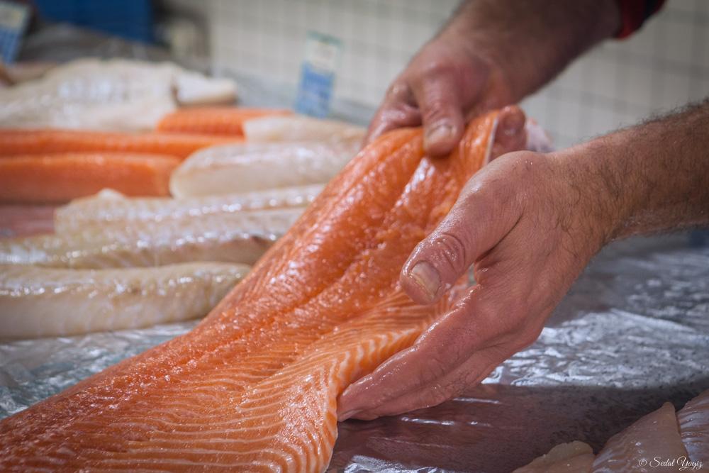 pêcherie-figuerolles - Montpellier (6 sur 10)