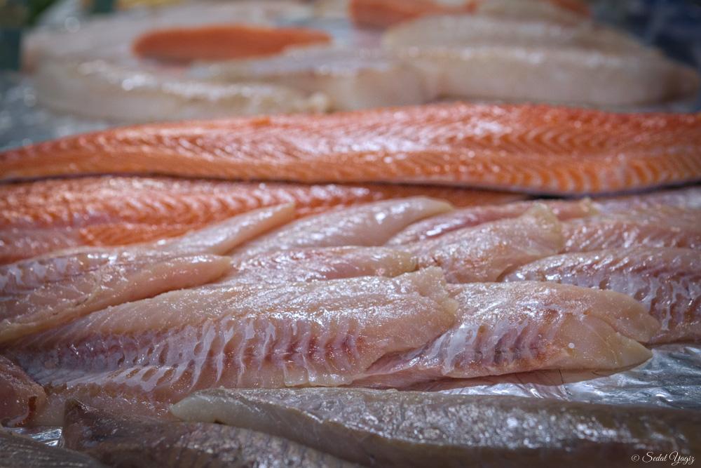 pêcherie-figuerolles - Montpellier (9 sur 10)